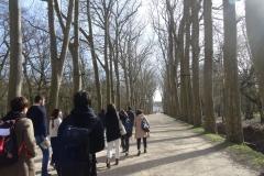 Vers le château de Chenonceau